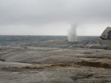 Blow hole at Bicheno