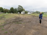 a naff but free camping spot at the back of a pub in Triabunna