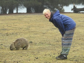 Wombat, there were lots of them on Maria Island - so cute