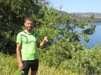 picking apples for our mid morning break