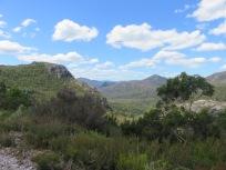 Cradle Mountain area