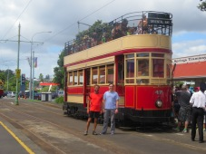 Tram next to the zoo in Auckland