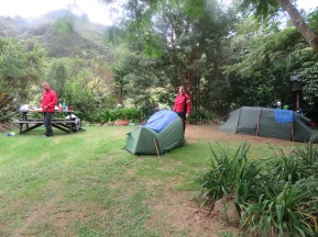wet camp site South of Auckland