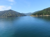the fiords on the ferry ride to the North island New Zealand